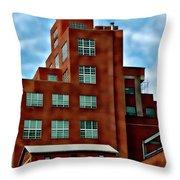 Natty Boh Tower  Throw Pillow