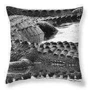Gator 2 18 Throw Pillow