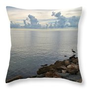 Scapes 7 17 Throw Pillow