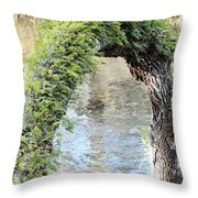 Natural Archway Over Hillsborough River Throw Pillow