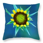 Natural Art Throw Pillow