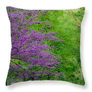 Natural Background Throw Pillow