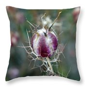 Natural Background With Purple Spiky Bulbs. Throw Pillow