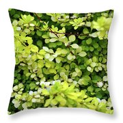 Natural Background With Small Yellow Green Leaves. Throw Pillow