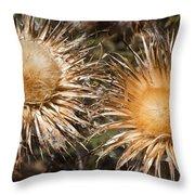 Natural Beauties Throw Pillow