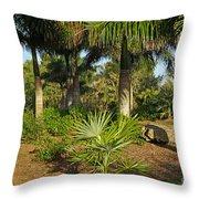 Natural Beauty Of Florida Throw Pillow