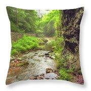 Natural Bridge Valley Throw Pillow