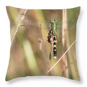 Natural Canvas With Dragonfly Throw Pillow