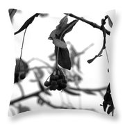 Natural Composition II Throw Pillow
