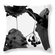 Natural Composition Throw Pillow