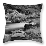 Natural Contrast Black And White Throw Pillow