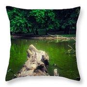 Natural Fishing Pier Throw Pillow