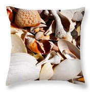 Natural Florida Throw Pillow