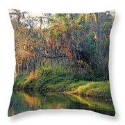 Natural Florida Landscape Throw Pillow