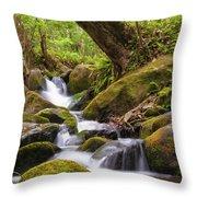 Natural Flow Throw Pillow