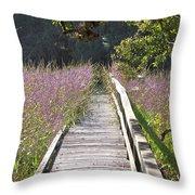 Natural Healing Throw Pillow