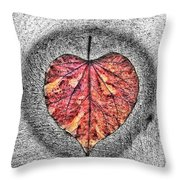 Natural Heart Throw Pillow