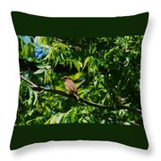 Natural Insect Repellant Throw Pillow