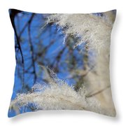 Natural Layers 032514 Throw Pillow