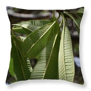 Natural Leaf Throw Pillow