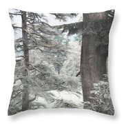 Natural Magnetism. Shabby Chic Collection Throw Pillow