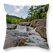 Natural Masterpiece Throw Pillow