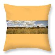 Natural Meadow Landscape Panorama. Throw Pillow