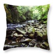 Natural Place Throw Pillow