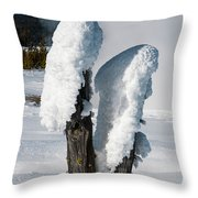 Natural Popsicles Throw Pillow