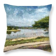Natural Reserve Of Cuare Throw Pillow