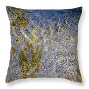 Natural Ripple Art Throw Pillow