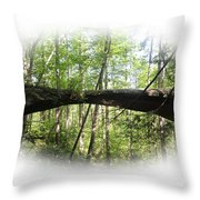 Natural Rock Bridge  Throw Pillow