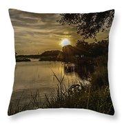 Natural Spotlight Throw Pillow