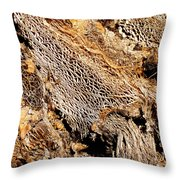 Natural Textural Abstract Throw Pillow