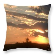 Natural Treasure Throw Pillow