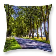 Natural Tunnel Throw Pillow