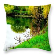 Natural Vibrance Throw Pillow