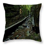 Natural Walls Throw Pillow