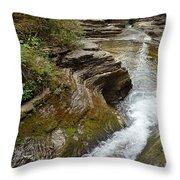 Natural Waterslide Throw Pillow