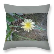 Natural... White And Yellow Flower Throw Pillow