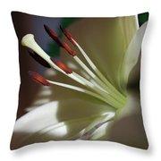 Naturally Elegant Throw Pillow