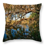 Naturally Florida Throw Pillow