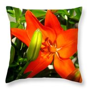 Naturally Intense Throw Pillow