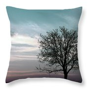 Nature - Early Sunrise Throw Pillow