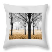 Nature - Mixed Season Throw Pillow