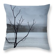 Nature -  The Naked Tree Throw Pillow