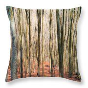 Nature 11 Throw Pillow