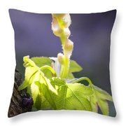 Nature 18 Throw Pillow