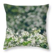 Nature 2 Throw Pillow