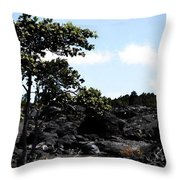 Nature 63 Throw Pillow
